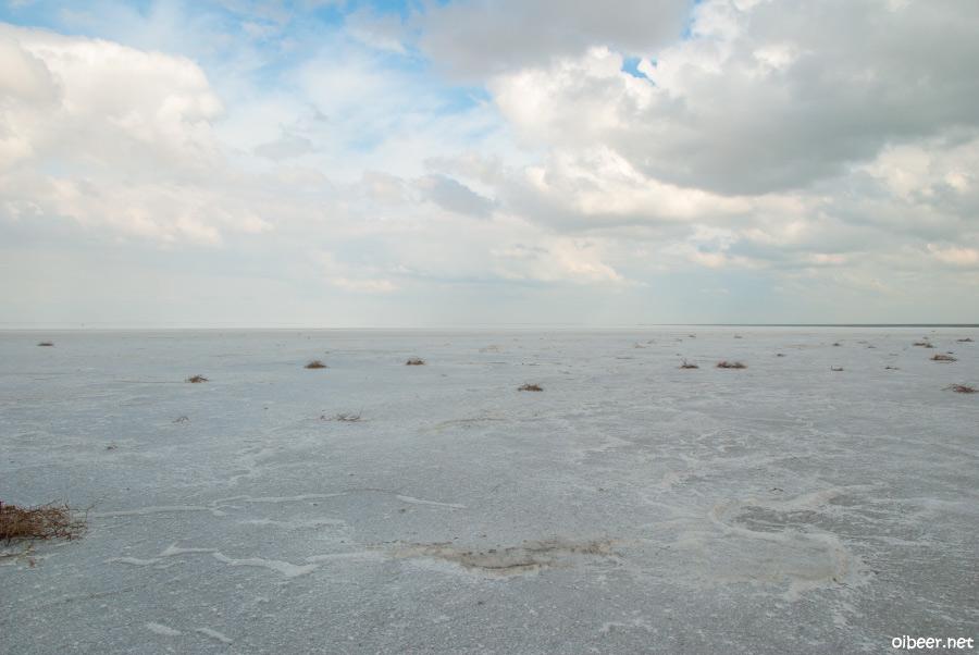 Вокруг соленого озера Эльтон