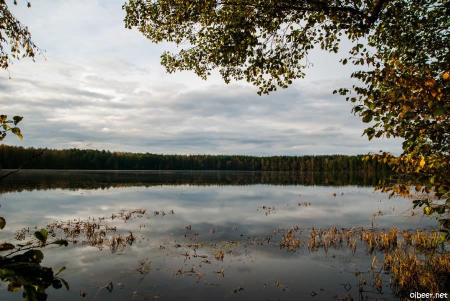 Осенняя Мещера, Шушмор