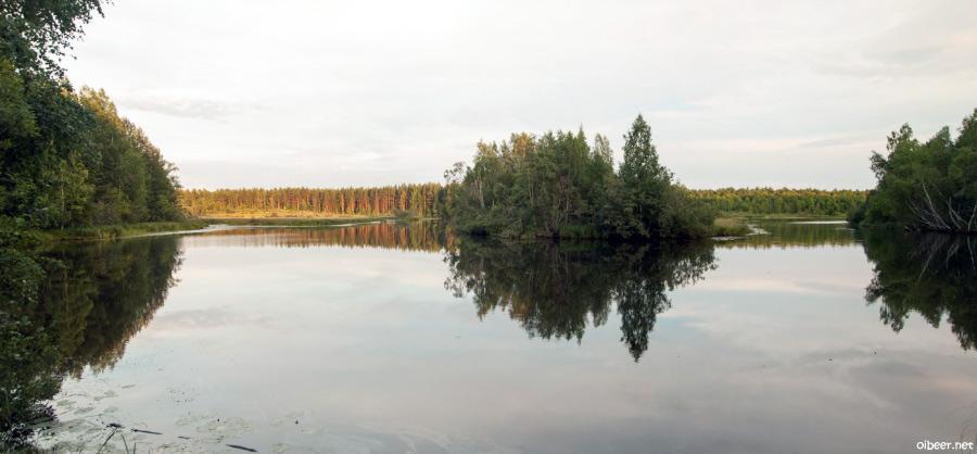 Бесов нос, петроглифы, дорога к бесову носу, онежское озеро