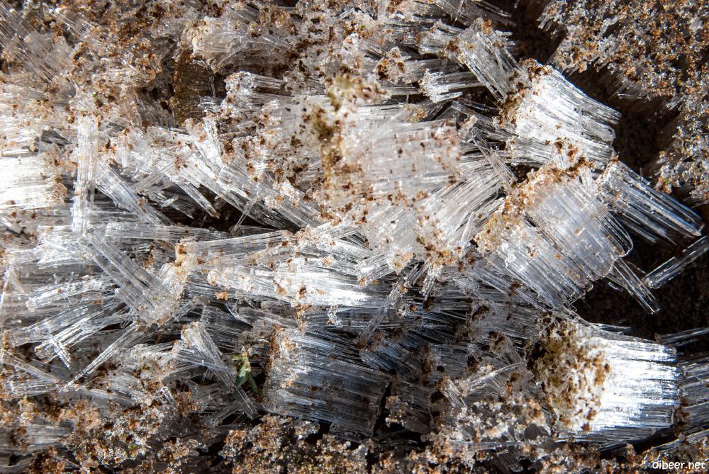 Мещера, узкоколейка