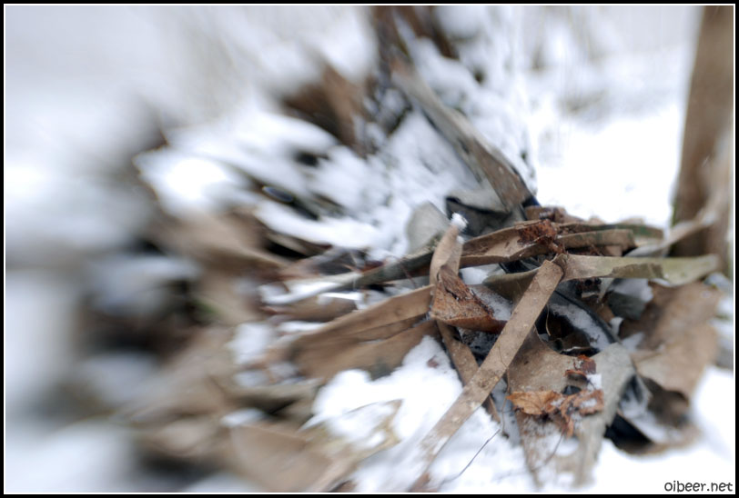 Разбившийся в лесу самолет на lensbabies