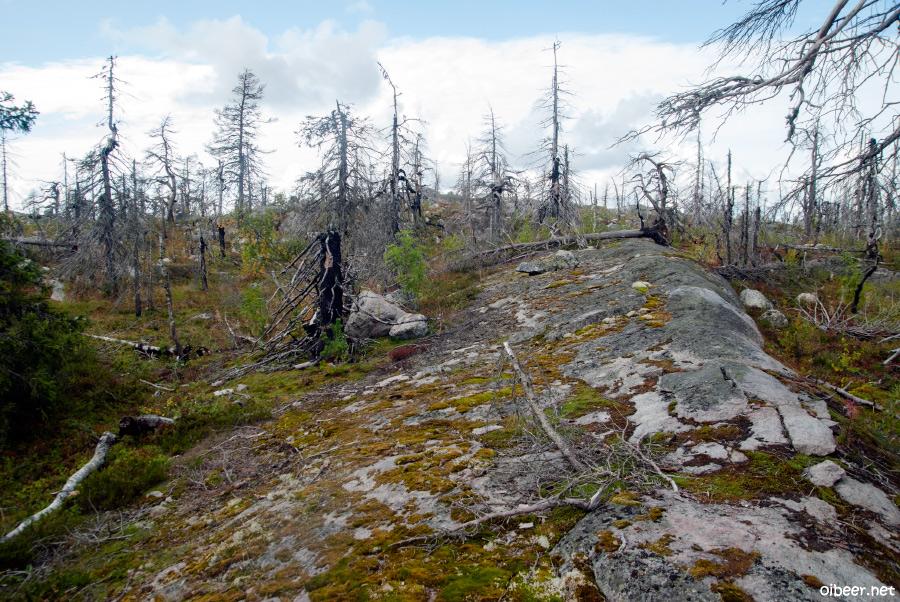 Гора Воттоваара